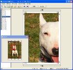 図表4 1枚の画像ファイルを16分割する設定にした時の印刷プレビュー。左下の全体図の上からも左からも2つ目の部分が拡大表示されている。